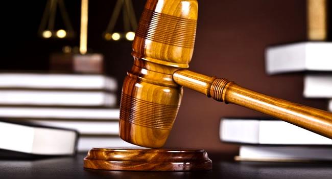 law octupus