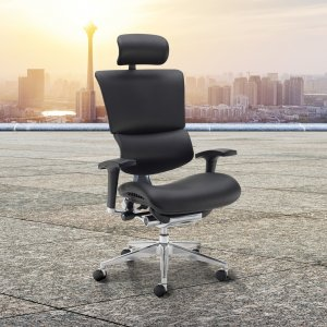 Dynamo Ergo Chair In Mesh Or Leather 9